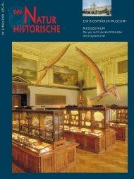 mesozoikum - Naturhistorisches Museum Wien