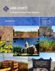 Approved Comprehensive Plan - Luna County