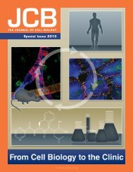 Selected Highlights - The Journal of Cell Biology - Rockefeller ...