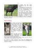Newsletter Juni 2012 - Noteselhilfe - Seite 2