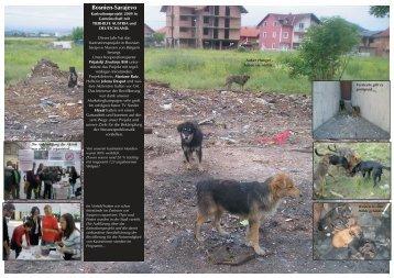 Bosnien-Sarajevo - Tierhilfe Süden