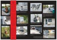 Straßen - tiere. - Tierhilfe Süden