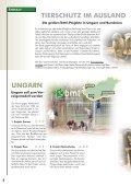 auslands-tierschutz auslands-tierschutz - Bund gegen Missbrauch ... - Seite 2