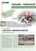 auslands-tierschutz auslands-tierschutz - Bund gegen Missbrauch ... - Seite 4