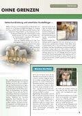 auslands-tierschutz auslands-tierschutz - Bund gegen Missbrauch ... - Seite 5