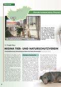 auslands-tierschutz auslands-tierschutz - Bund gegen Missbrauch ... - Seite 6