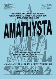 Voor alle top mineralen - Amathysta