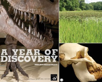 discovery - Cleveland Museum of Natural History