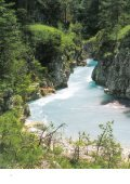 Vakantieregio Reutte - Tirol - Page 4