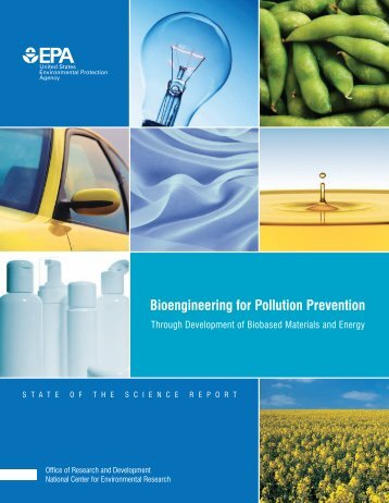 Bioengineering for Pollution Prevention (PDF) - US Environmental ...