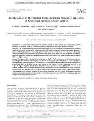Identification of the plasmid-borne quinolone resistance gene qnrS ...