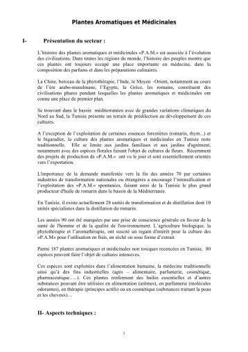 Plantes Aromatiques et Médicinales I- Présentation du secteur - l'Apia
