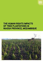 The Human Rights Impacts of Tree Plantations in - Transnational ...