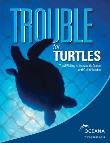 Trouble for Turtles - Oceana