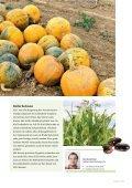 Reifezeit Ausgabe 01/2012 - F. Url - Seite 5