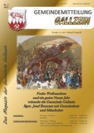 2011 - Gemeinde Gallzein - Land Tirol