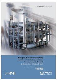Biogas-Netzeinspeisung 19/2005 - Energiesysteme der Zukunft
