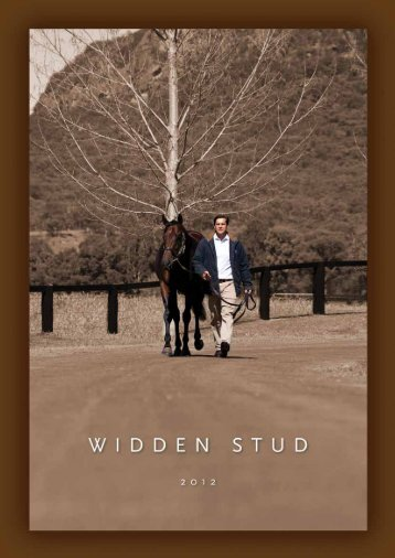 A Champion 2YO Sire. Proven source of Gr 1 winning ... - Widden Stud