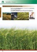 Getreide - Seite 4