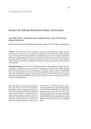 Revision der Gattung Dichodontium (Musci ... - Tropical Bryology