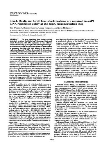 DNA replication solely at the RepA monomerization step