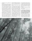 Ioannis Schinezos è un fotografo professionista, ma non solo - Page 5