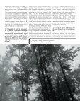 Ioannis Schinezos è un fotografo professionista, ma non solo - Page 6