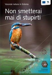 Non smetterai mai di stupirti