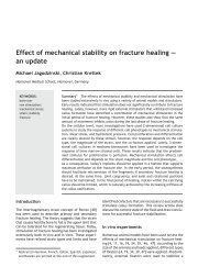 Effect of mechanical stability on fracture healing ... - Docjago.com