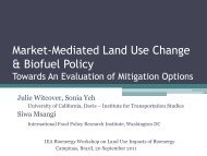 Market-mediated land use change and biofuel policy - Sustainable ...