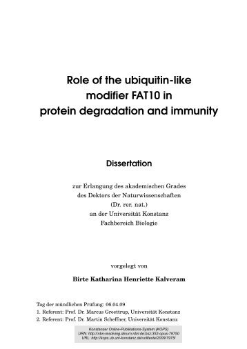 Role of the ubiquitin-like modifier FAT10 in protein degradation and ...