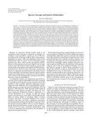 PDF 79.9 KiB