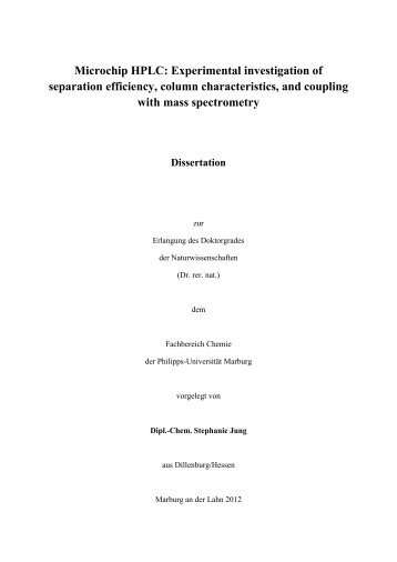 Microchip HPLC: Experimental investigation of separation efficiency ...