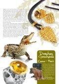 Drachenflüsterer - Drachenfels Design - Page 7