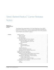 Steel Belted Radius Carrier 7 0 Installation Guide - Juniper Networks