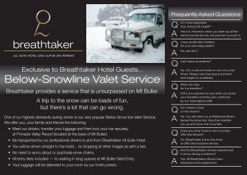 Below-Snowline Valet Service