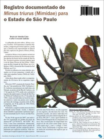 Registro documentado de Mimus triurus - Atualidades Ornitológicas