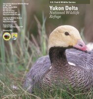 Brochure - Yukon Delta National Wildlife Refuge
