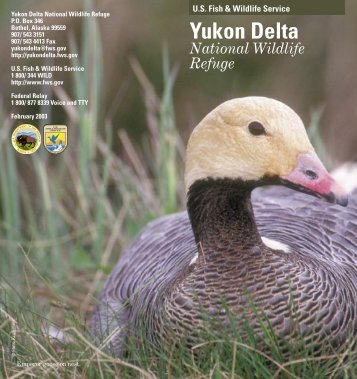 Brochure - Yukon Delta National Wildlife Refuge