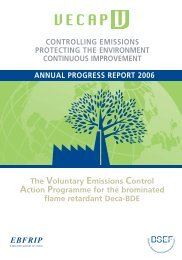 2004-2006 Developments of the VECAP programme