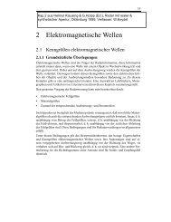 2 Elektromagnetische Wellen - Zur Person
