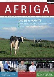afriga dossier: mamite - Transmedia 2009