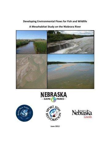 Developing Environmental Flows for Fish and ... - MesoHABSIM
