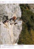 Vertiges en Valais - Montagne - Evasion - Page 7
