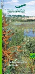 Bockwitzer See - Sächsische Landesstiftung Natur und Umwelt
