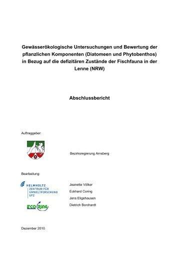 Abschlussbericht - Umsetzung der EU-Wasserrahmenrichtlinie