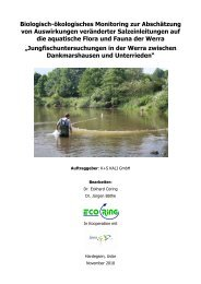Jungfischuntersuchung in der Werra zwischen Dankmarshausen ...