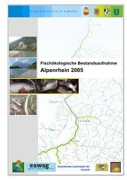 Fischökologische Bestandsaufnahme Apenrhein - Zukunft Alpenrhein