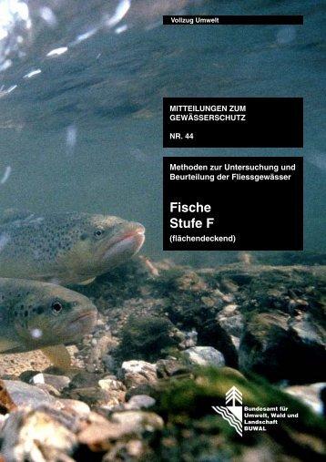 Fische Stufe F – (flächendeckend) - Modul Stufen Konzept