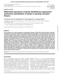 Differential expression of genes identified by suppression ...
